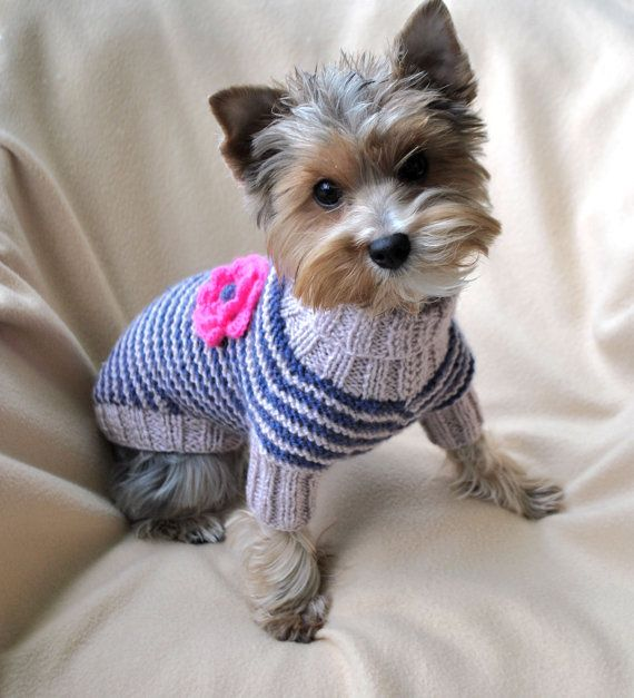 Small Dog Sweaters Hand Knit Dog Sweater Knit by WooleeHandmade