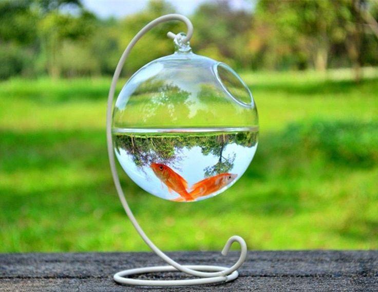 17 best ideas about vase fish tank on pinterest round for Vase aquarium rond
