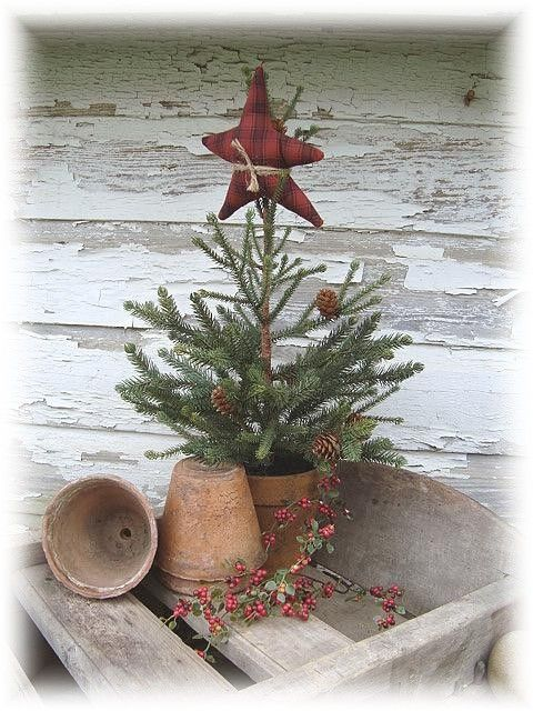 Prim Pine...in a pot...with a stuffed star. - love the star tied on the top