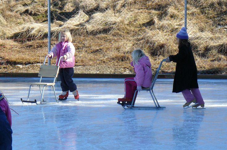 Mt Lyford holiday Homes ice skating