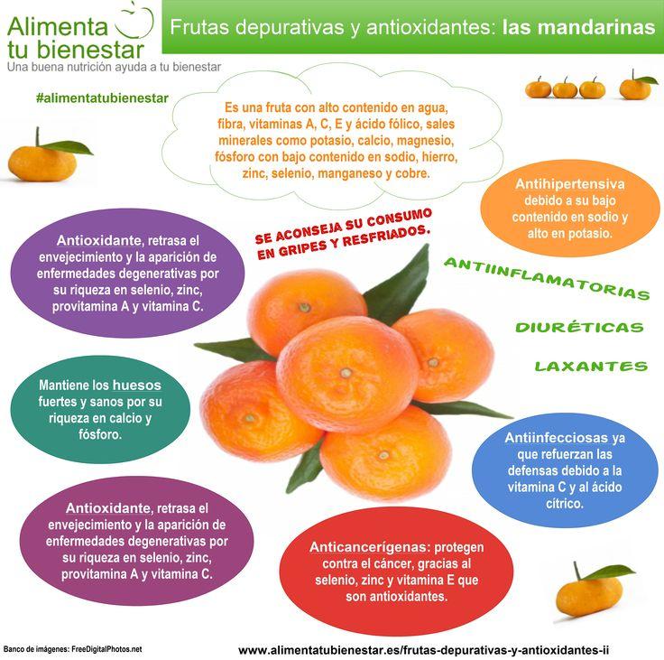 100 best Frutas y verduras de color amarillo yo naranja  Orange