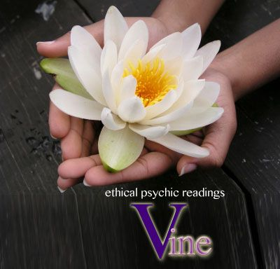 Australian online phone psychic reading - Book an ethical psychic reading by using PayPal. Vine Psychic Reading Line has eliminated customer service screening about why you want a reading preserving the original spiritual arts.   You can be guaranteed your having a credible phone psychic reading.  To book a phone psychic reading go to source link: #psychic #psychics #phonepsychic #Australia #international #clairvoyant #medium #onlinepsychic