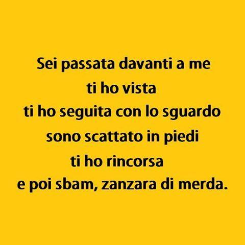 Romanticismo 2.0 (By @dudekkvar) #tmlplanet #zanzara #animali