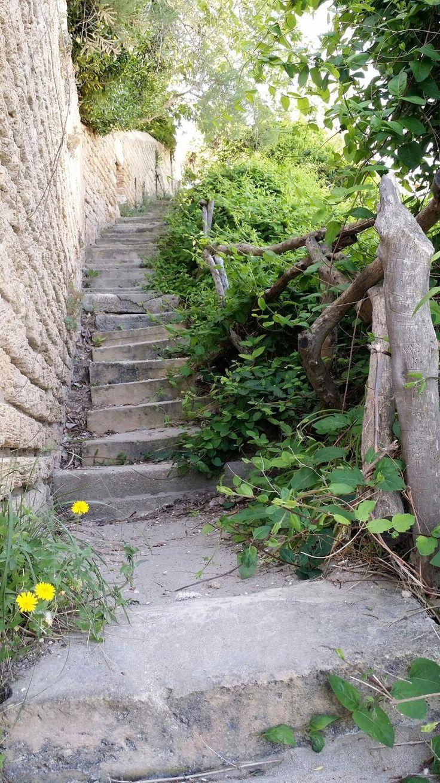 Eine verwunschene Treppe auf Mallorca. #Reisen #Travel #Travelling #Spain #Holidays #Nature