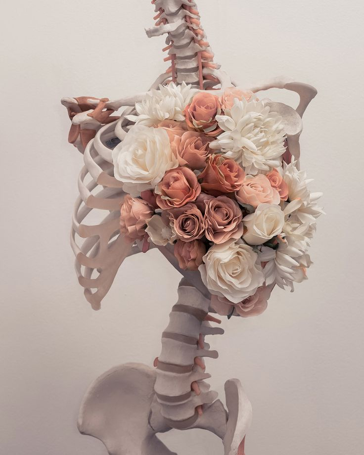 """brookedidonato: """" Found this skeleton in the trash over a year ago. Finally giving it the burial it deserves. """""""