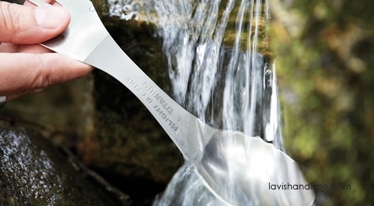 Talk about long lasting. This non-toxic titanium is so durable, it will outlast you! Thanks to the highly polished surface, there's no metallic taste -- and it's dishwasher safe. Great for picnics, school or work. www.lavishandlime.com/Light-My-Fire-Spork-titanium-p-1515.html#