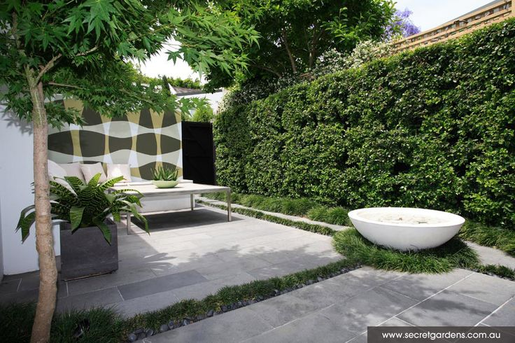 Courtyard garden graphic green white art on garage wall for Contemporary courtyard garden designs