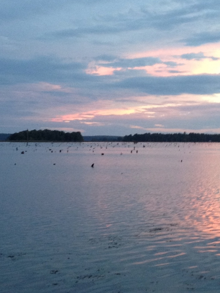 17 best images about chief caloosa on pinterest lakes for Lake seminole fishing