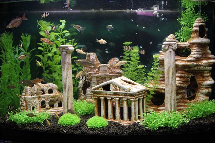 Картинки по запросу сухое оформление аквариума