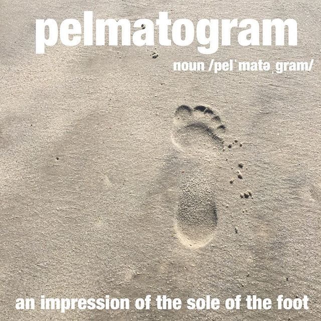 One of her favorite things to do on the beach is to try and walk in others pelmatograms. #footprints #sand #beach #wordoftheday #dictionary