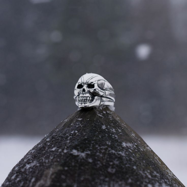 Imperious Skull Ring - my handmade silver jewelry, selling on www.ElionDesign.etsy.com