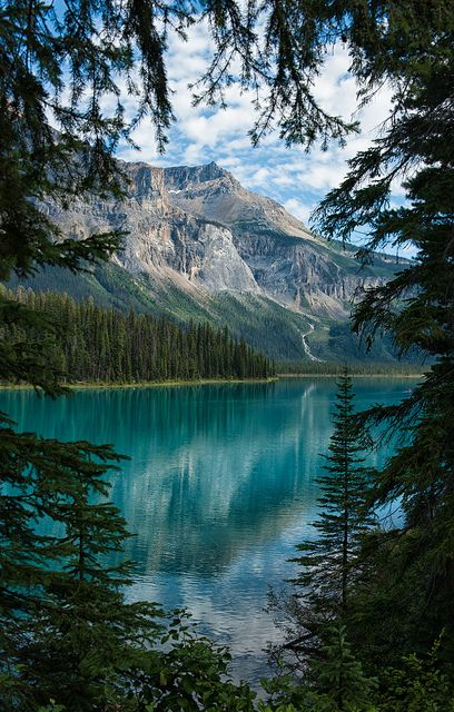 "3leapfrogs: ""visitheworld: "" A peek of Emerald Lake, Yoho National Park / Canada (by Kristin Repsher). "" . Come leap with me… •=• •=• •=• 3leapfrogs "" Follow me www.joselito28.tumblr.com"