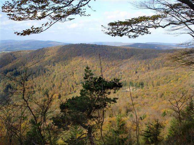 Abenteuer per pedes - Der P4 in der 'Hessischen Schweiz' (Naturpark Meißner - Kaufunger Wald)