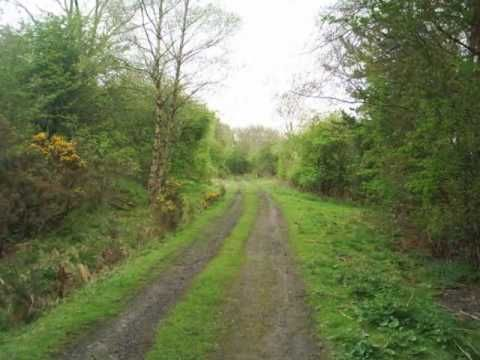 TheTrack - Three miles of the disused Allendale Railway