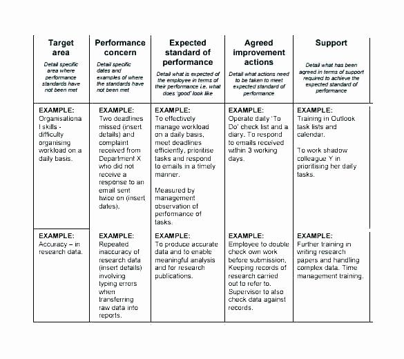 Performance Improvement Plan Template Excel Lovely Performance Improvement Plan Template How To Plan Templates Action Plan Template