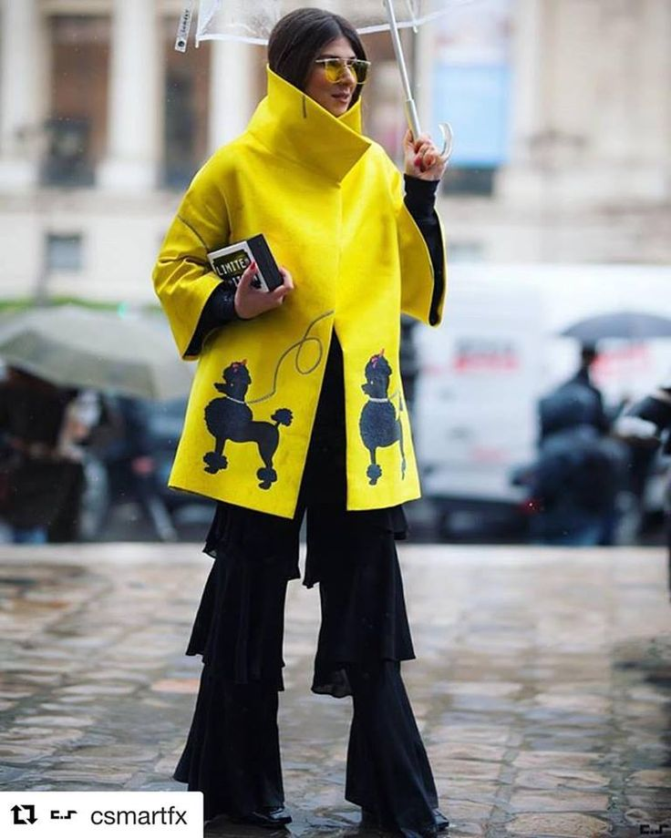 #raininparis all you need is attitude an umbrella and my poodle coat!