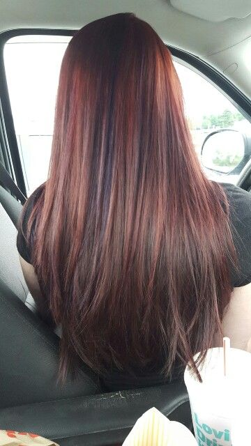 Burgundy hair with purple low lights