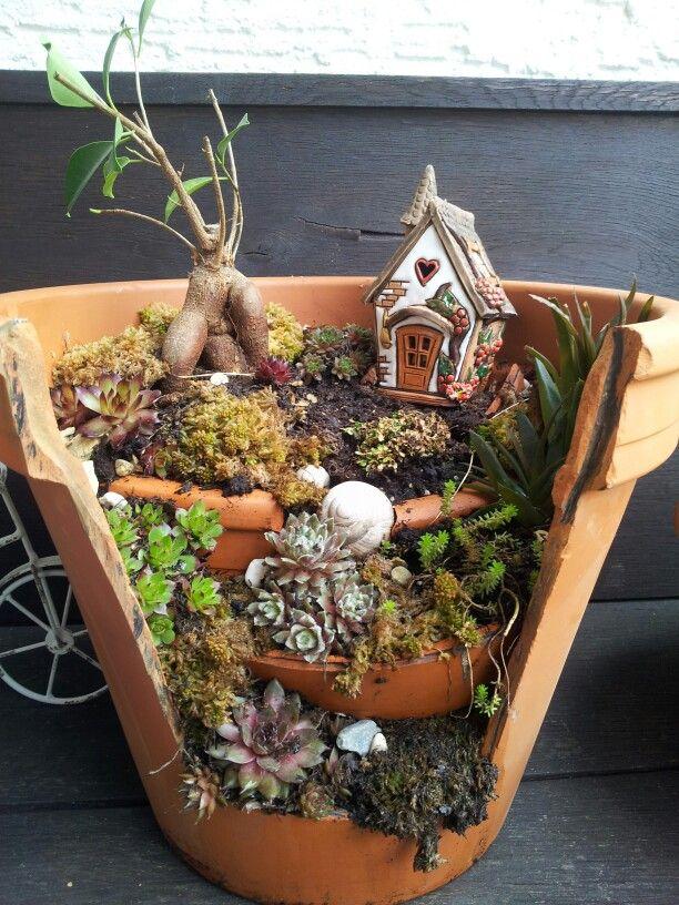 Gnome Garden: Garden, Miniatures