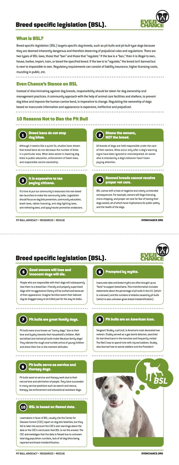 Why BSL (Breed Specific Legislation) isn't effective: 10 Reasons Not to Ban the Pit Bull Factsheet. For the PDF version visit: http://evenchance.org/wp-content/uploads/2011/11/EC-10-Reasons-NoBSL-Factsheet.pdf