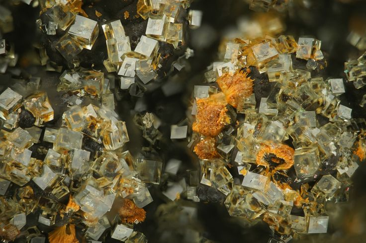 Pharmacosiderite KFe3+4(AsO4)3(OH)4·6-7H2O Locality: Hilarion Mine Hilarion area, Kamariza Mines Agios Konstantinos [St Constantine] Lavrion District Mines, Lavrion District, Attikí Prefecture,...