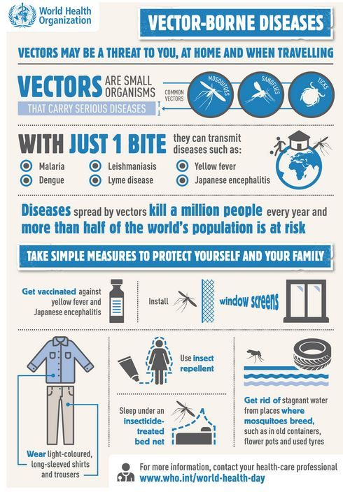 Your overall health greatly affects the health of your heart. This World Health Day, take steps to protect yourself from vector-borne disease with World Health Organization.