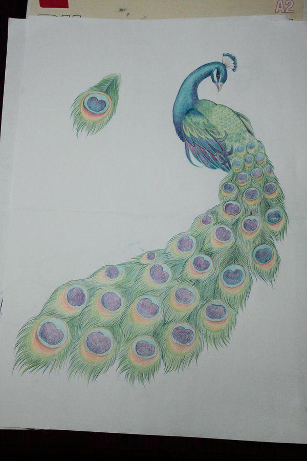 best 25 peacock tattoo side ideas on pinterest peacock
