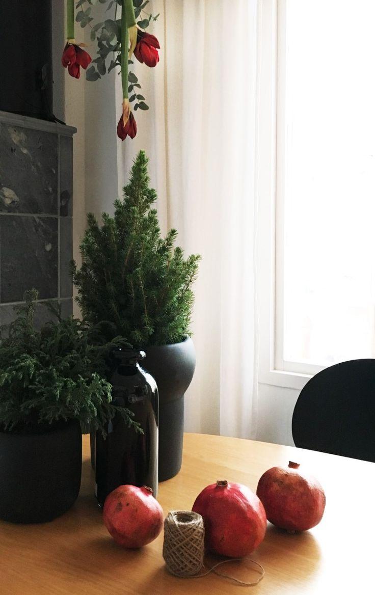 Julblommor i taket med fina amaryllisar och eucalyptus är ett ganska lätt julpyssel när du vill dekorera inför julen. Scandinavian christmas decoration with flowers and eucalyptus hanging from the roof.