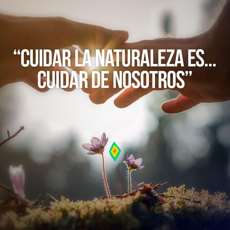 Cuidar de la naturaleza es...cuidar de nosotros