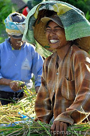 Indonesian workers separating the grain of rice Amed Bali