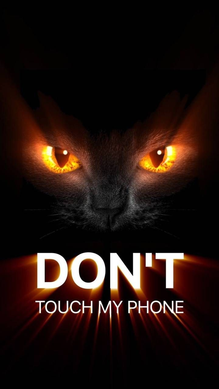 Download Dont Touch My Phone Wallpaper By Nickkattekwaad 1d Free On Zedge N Dont Touch My Phone Wallpapers Cat Phone Wallpaper Funny Lock Screen Wallpaper