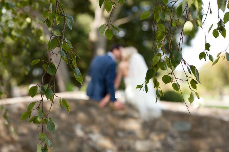 the happy couple - brenda mcguire photography