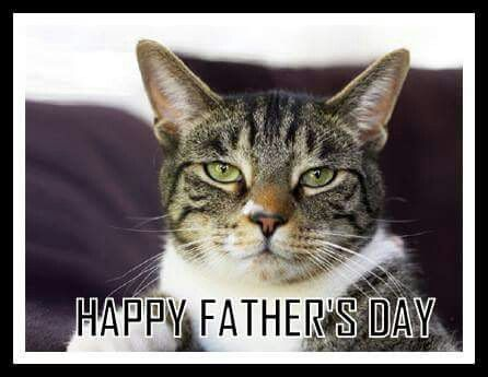 29 best catsmotherfather day images on pinterest kittens kitty happy fathers day from the cat sciox Gallery