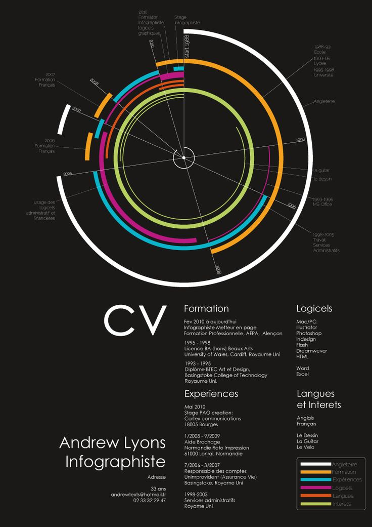The Best Visual Infographic CV's