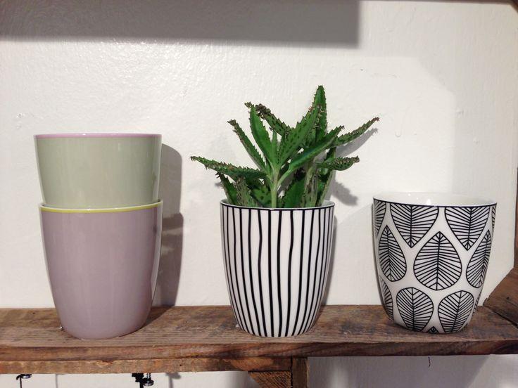 porcelain www.aspegren.dk