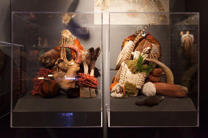 Particolare Cabinets of Curiosity, Lyndal Osborne, Glenbow, 2015-2016