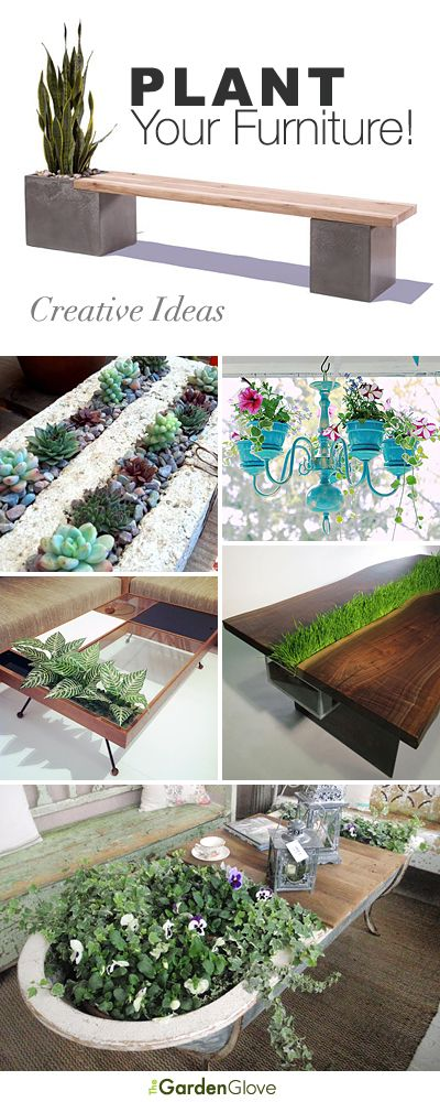 Plant Your Furniture! • Tons of Ideas & Tutorials!