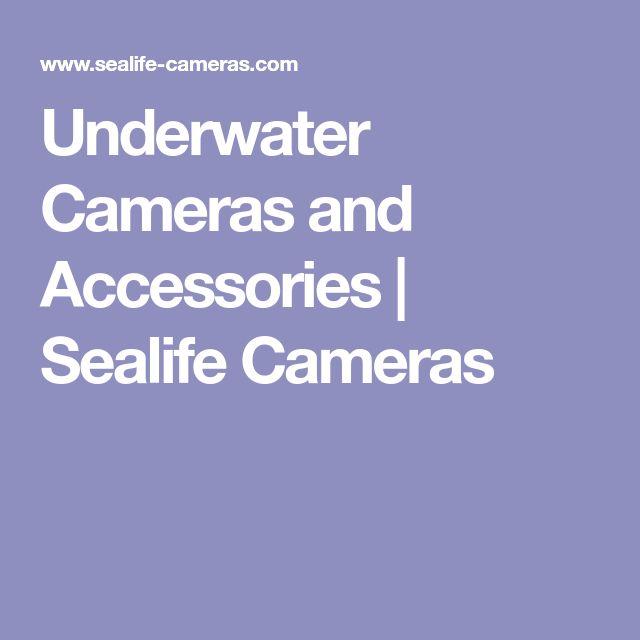 Underwater Cameras and Accessories | Sealife Cameras