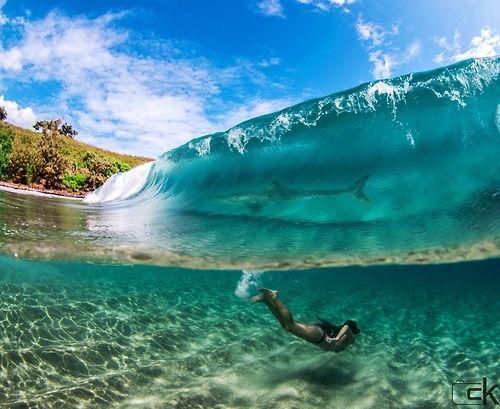 Hidden ocean surprises blue sky ocean clouds tropical waves swim shark