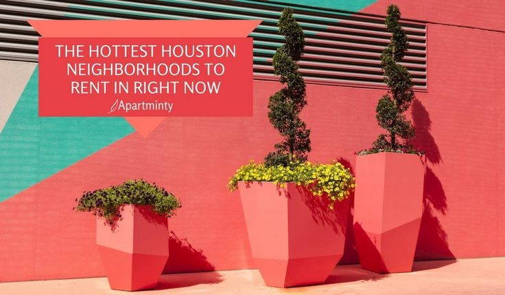 The 3 Hottest Houston Neighborhoods To Rent In Right Now | Moving To Houston | Apartment Hunting In Houston