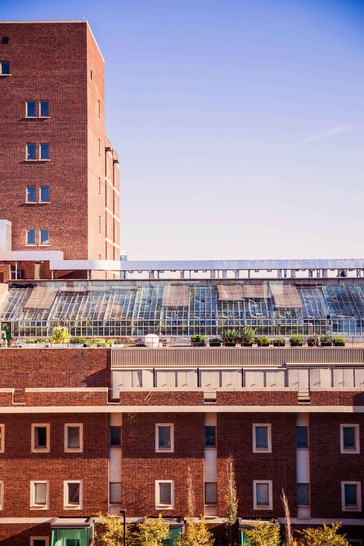 Rooftop greenhouse at the University of Alberta (Edmonton, Alberta, Canada)