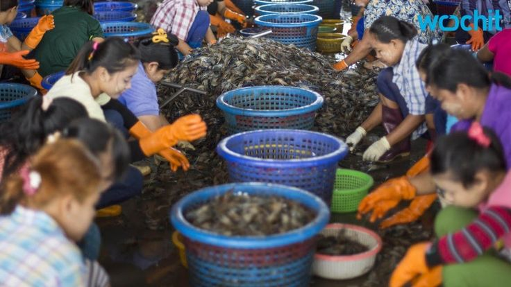 President Obama Signs Bill Banning The Import Of Forced Labor Goods