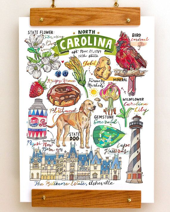 Name: North Carolina (portrait) This illustration is perfect for anybody who loves to celebrate their North Carolina State pride! Print of my original