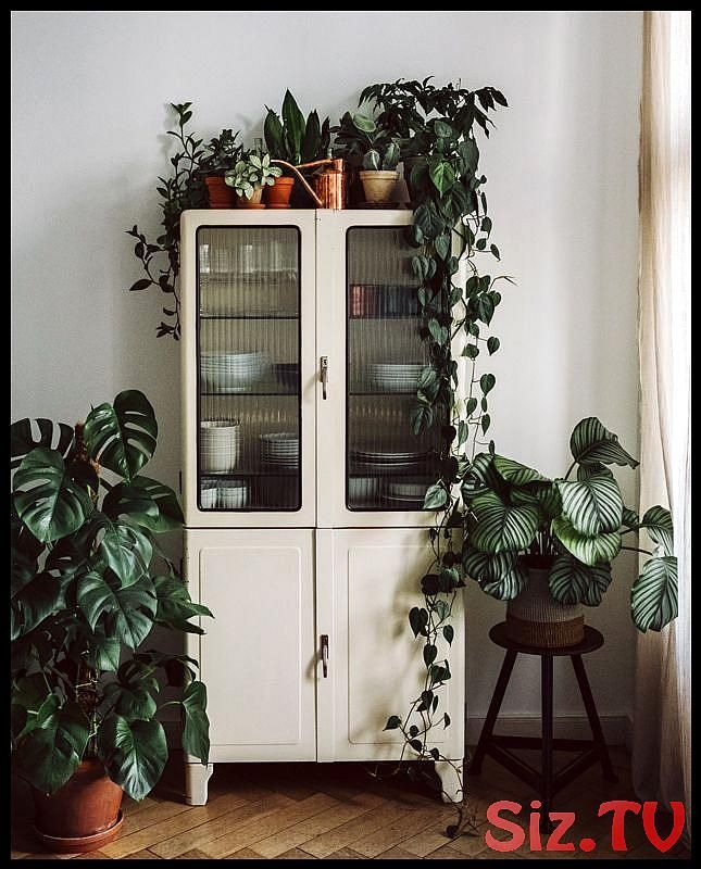 75 Best Garden D Cor Design And Diy Ideas 75 Best Garden D Cor Design And Diy Ideas Save Imag Esszimmer Dekor Ideen Esszimmerschrank Zimmer Dekor Ideen