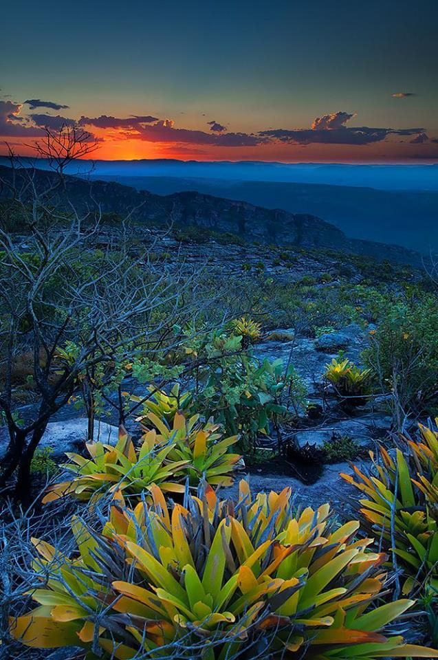Chapada Diamantina - Bahia (via Climatologia Geográfica) Brazil Wonders