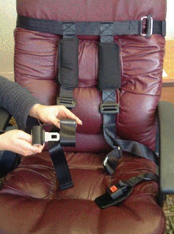 Crelling Harnesses For Aircraft Diaper Punishment Developmental Delays Harness
