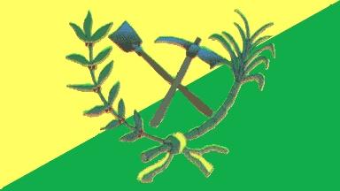 Bandera Seboruco Estado Táchira