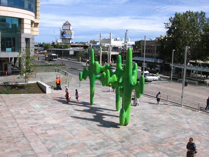 #Perth Cactus    http://wp.me/p291tj-2m