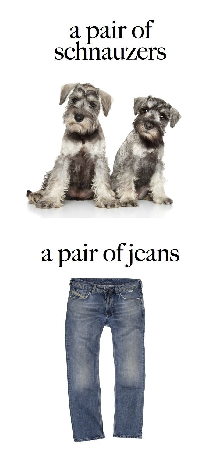 """""""Pair"""" can be singular or plural. Examples: A pair of schnauzers were entered in the dog show. (plural) A pair of jeans makes a great gift. (singular) #GrammarGirl"""