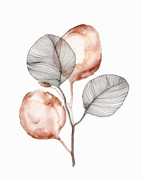 Eukalyptus-Aquarell Strichzeichnung drucken – Art.Pinindec