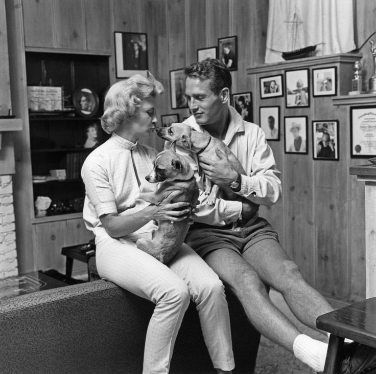 Pinterest discover and save creative ideas for Paul newman joanne woodward love story